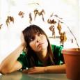 Чтобы поднять себе настроение, вовсе не обязательно обращаться за помощью к психоаналитикам.